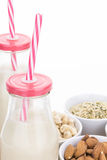 Bottles of homemade plant based milk and bowls with ingredients Stock Photos