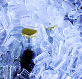 Bottles in ice Royalty Free Stock Photos