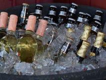 Bottles in Ice Stock Photos