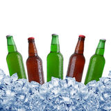 Bottles in ice Stock Photography