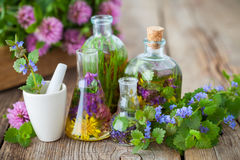 Bottles of infusion of healthy herbs, mortar and healing plants. Bottles of tincture or infusion of healthy herbs, mortar and healing plants on old wooden board royalty free stock images