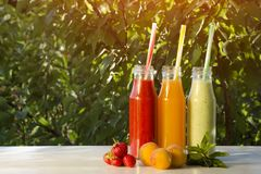 Bottles with juice and fruits on a green background, food concept. Summer, sunlight.  royalty free stock photos