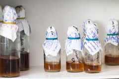 Bottles in laboratory Royalty Free Stock Photo