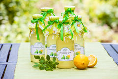 Bottles with lemon balm syrup Royalty Free Stock Images