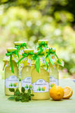 Bottles with lemon balm syrup Royalty Free Stock Photography