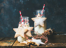 Bottles with milk, Christmas festive cookies, decoration rope, spices Stock Photography