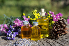 Bottles with natural aroma oil over nature background. Royalty Free Stock Photos