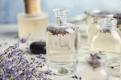 Bottles with natural herbal oil and lavender flowers royalty free stock images