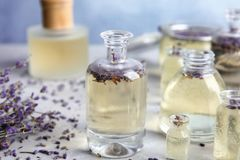 Bottles with natural herbal oil and lavender flowers royalty free stock image