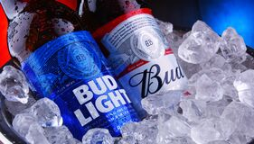 Free Bottles Of Bud And Bud Light Beer In Bucket With Crushed Ice Stock Photography - 179188972