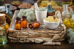 Free Bottles Of Homeopathic Drugs, Mortars Of Mineral Substances And Medicinal Plants. Infusion Bottles And Healing Herbs. Homeopathy Stock Photos - 183283933