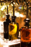 Bottles of oil. With tips standing on wooden table with oil tree Stock Photography