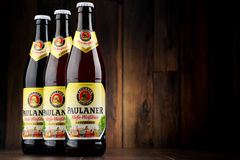 Bottles of Paulaner Hefe Weissbier Royalty Free Stock Photography