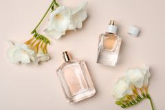 Bottles of perfume and flowers on light background. Top view Royalty Free Stock Photo