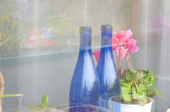 Bottles and pink flower at window Stock Photos