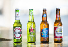 Bottles of popular assorted beers Royalty Free Stock Images