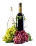 bottles röd vit wine för druvor Fotografering för Bildbyråer