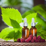 Bottles with raspberry oil, fresh berries and raspberry leaves o. N a natural green background Royalty Free Stock Photos