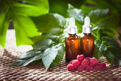 Bottles with raspberry oil, fresh berries and raspberry leaves o. N a natural green background Stock Photography