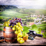 Bottles of red and white wine with fresh grape Royalty Free Stock Images