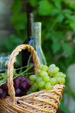 Bottles of red and white wine with grapes Royalty Free Stock Images