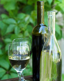 Bottles of red and white wine with grapes Royalty Free Stock Photos