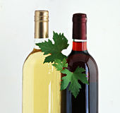 Bottles of red and white wines. With grape leafs Royalty Free Stock Photography