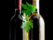 Bottles of red and white wines. With grape leafs Stock Photography