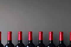 Bottles. Red wine bottles placed in a row Stock Images