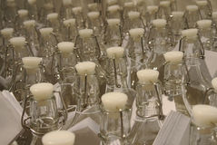 Bottles set in a container Stock Image