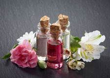 Bottles of Spa essential oils Stock Photography