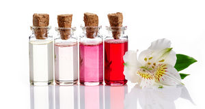 Bottles of Spa essential oils Stock Images