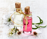 Bottles of Spa essential oils Royalty Free Stock Photo