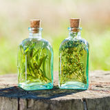 Bottles of thyme and rosemary essential oil or infusion outdoors Royalty Free Stock Photo