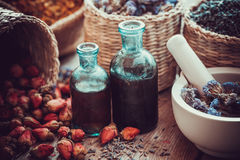 Bottles of tincture, basket with rose buds, and dried flowers Royalty Free Stock Photography