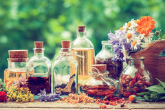 Bottles of tincture and dry healthy herbs outdoors Royalty Free Stock Photos