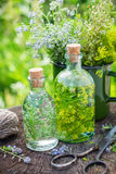 Bottles of tincture of healing herbs and medicinal herbs. Royalty Free Stock Photography