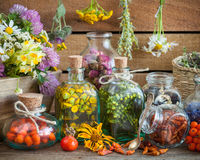 Bottles of tincture and healthy herbs. Healing herbs in wooden box Herbal medicine stock images