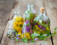 Bottles of tincture or infusion of healthy herbs on table. Royalty Free Stock Image