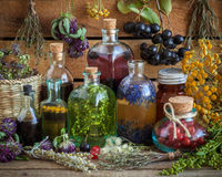 Bottles of tincture, potion, oil, healthy berries and herbs royalty free stock photo