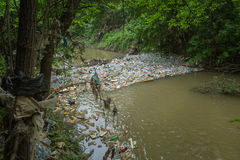 Bottles and trash in the river Royalty Free Stock Photo