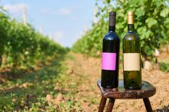 Bottles of vine with empty label. Stock Photo