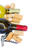 Bottles of white and red  wine Royalty Free Stock Image
