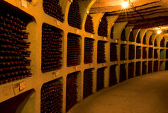 Bottles of wine. In the cellar of winery Stock Image