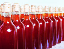 Bottles of wine. Stock Photos