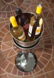 Bottles wine in bucket Stock Photo