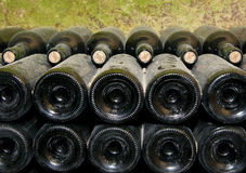 Bottles in wine cellar Stock Photos