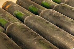 Bottles in wine cellar Royalty Free Stock Photo