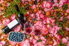 Bottles, wine glasses with blueberry in rose garden. For couples stock photography