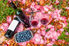 Bottles, wine glasses with blueberry in rose garden. For couples stock images